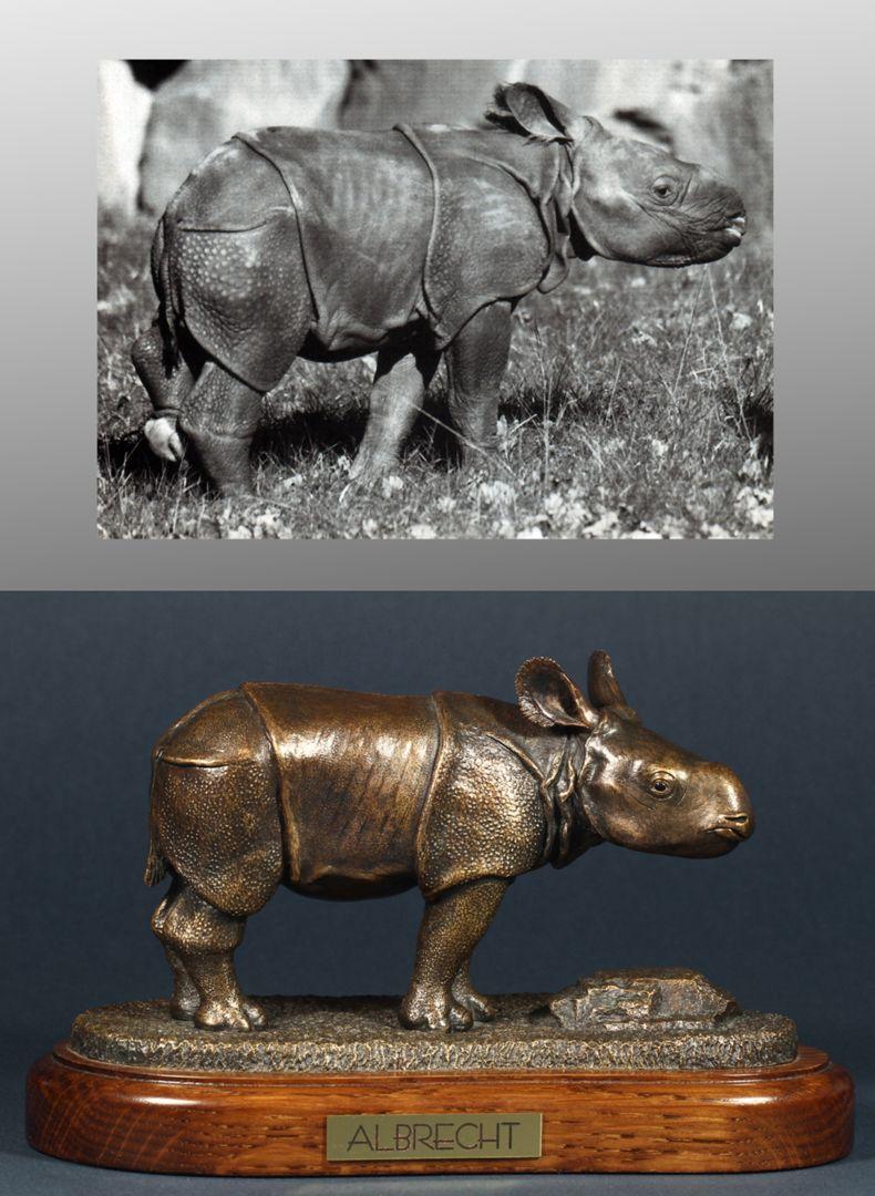 Albrecht Bildvergleich, Foto oben: ALBRECHT, Manati, 15. Jhg. H. 1, April 2000, S. 4, Foto Dr. Lorenzo von Fersen (Tiergarten Nürnberg)