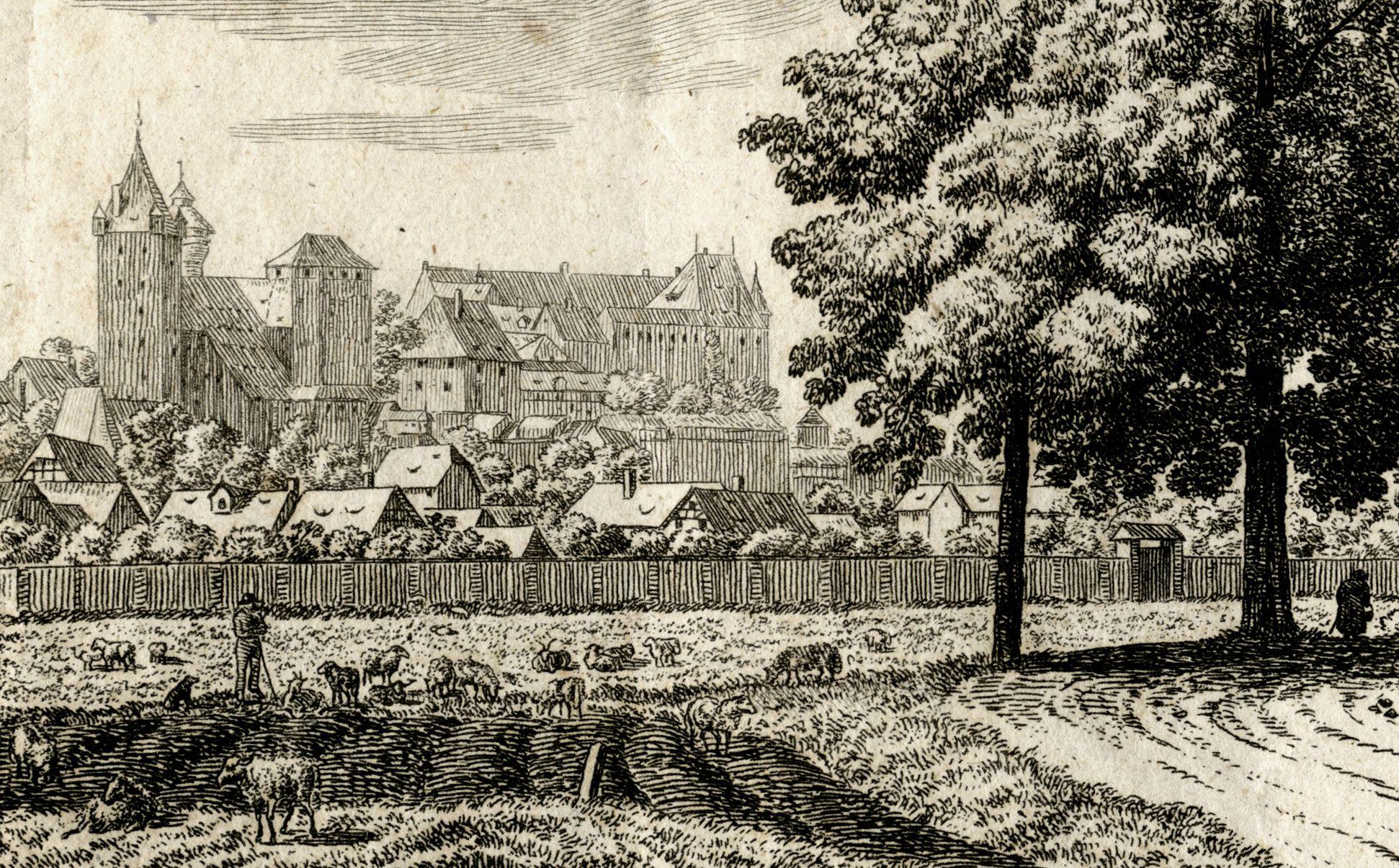 Die Burg zu Nürnberg, vom Judenbühl aus angesehen mittleres Bildfeld mit Burg