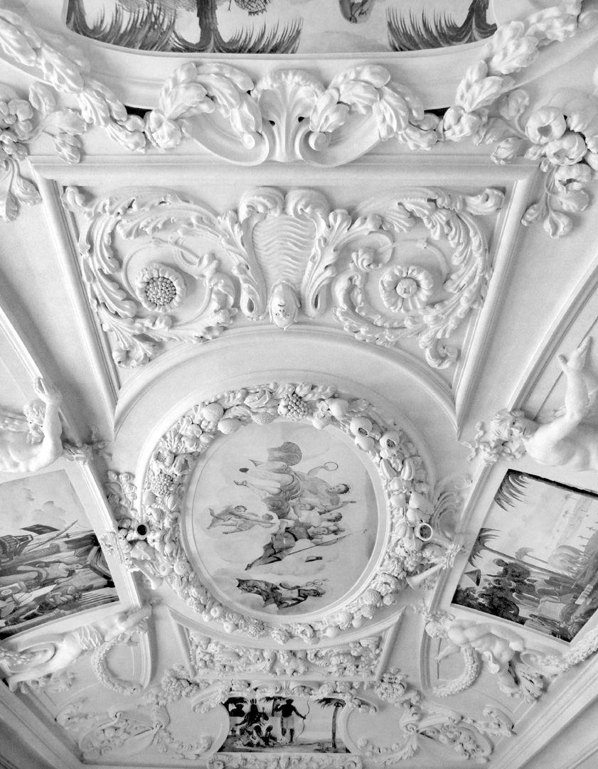 Stuckdecke aus dem Gartensaal des ehemaligen Merkelschen Anwesen Blick zur Decke in Richtung Osten