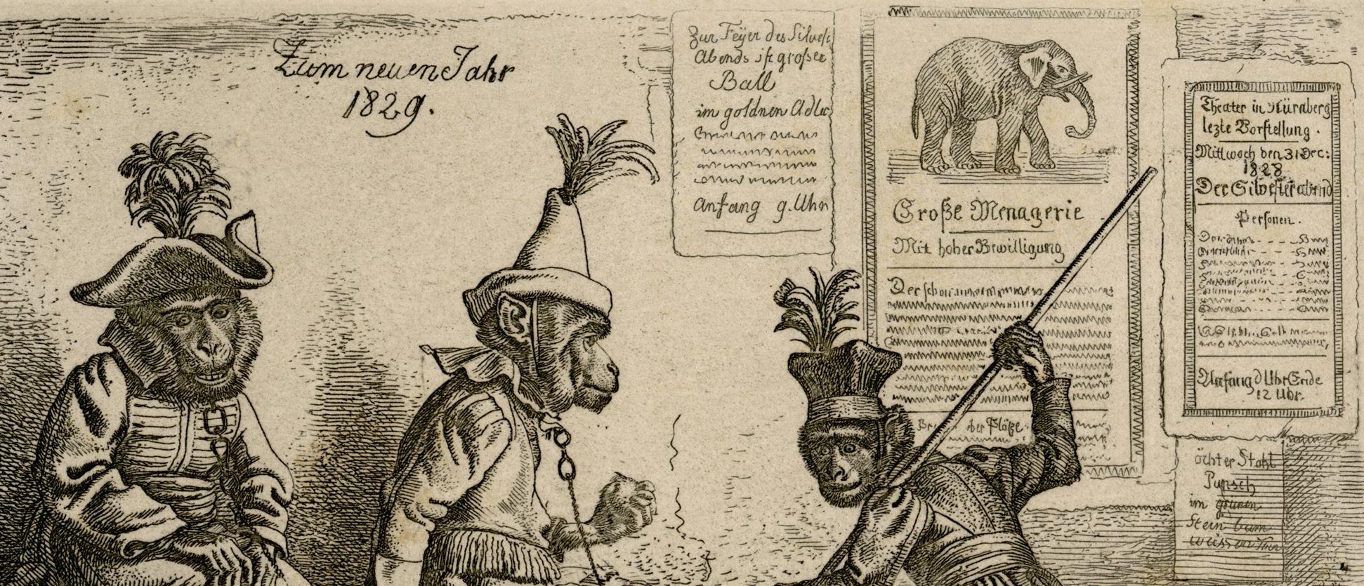 Drei Affen obere Bildhälfte