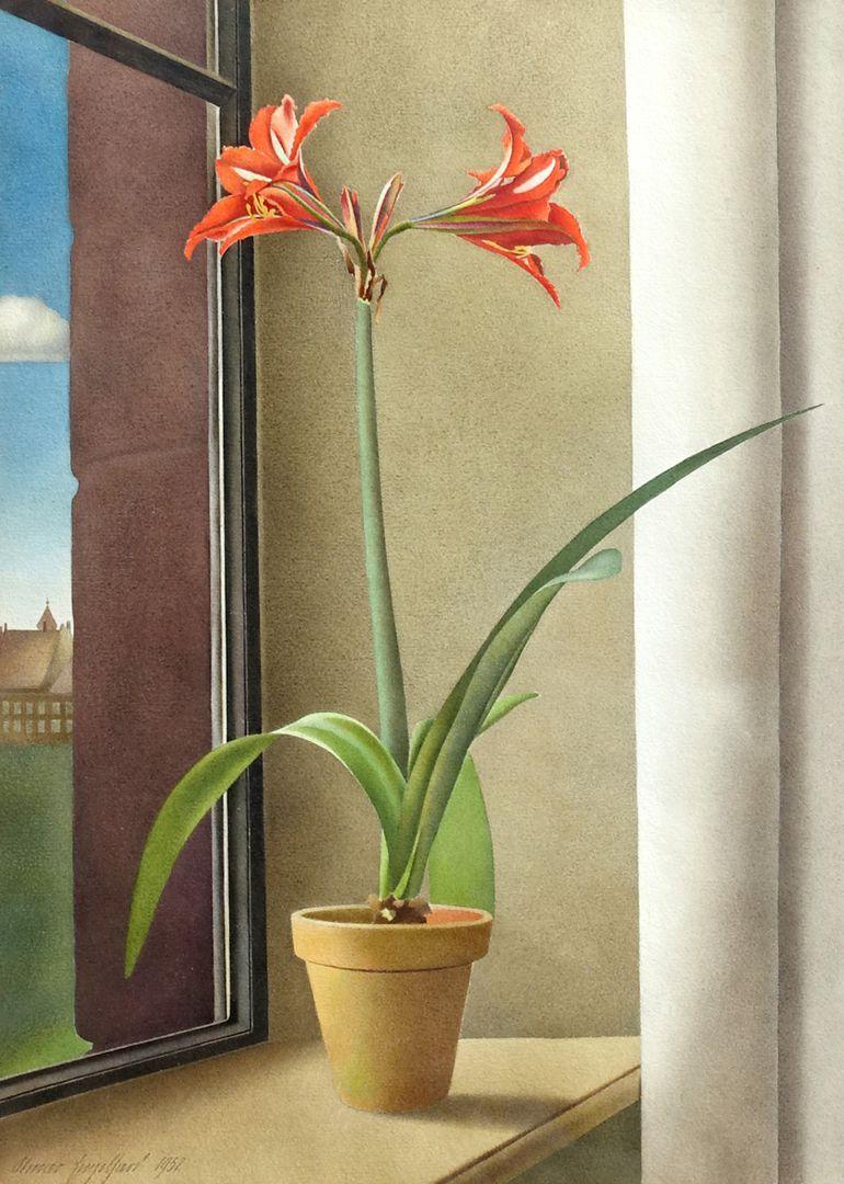 Blumenstillleben, Amaryllis Gesamtansicht