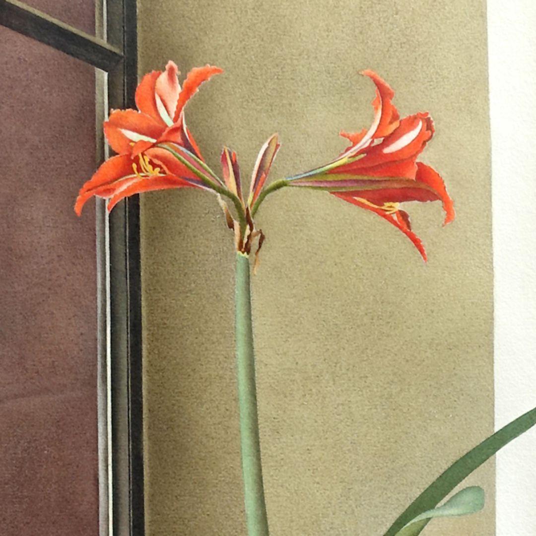 Blumenstillleben, Amaryllis Detail mit Blüten
