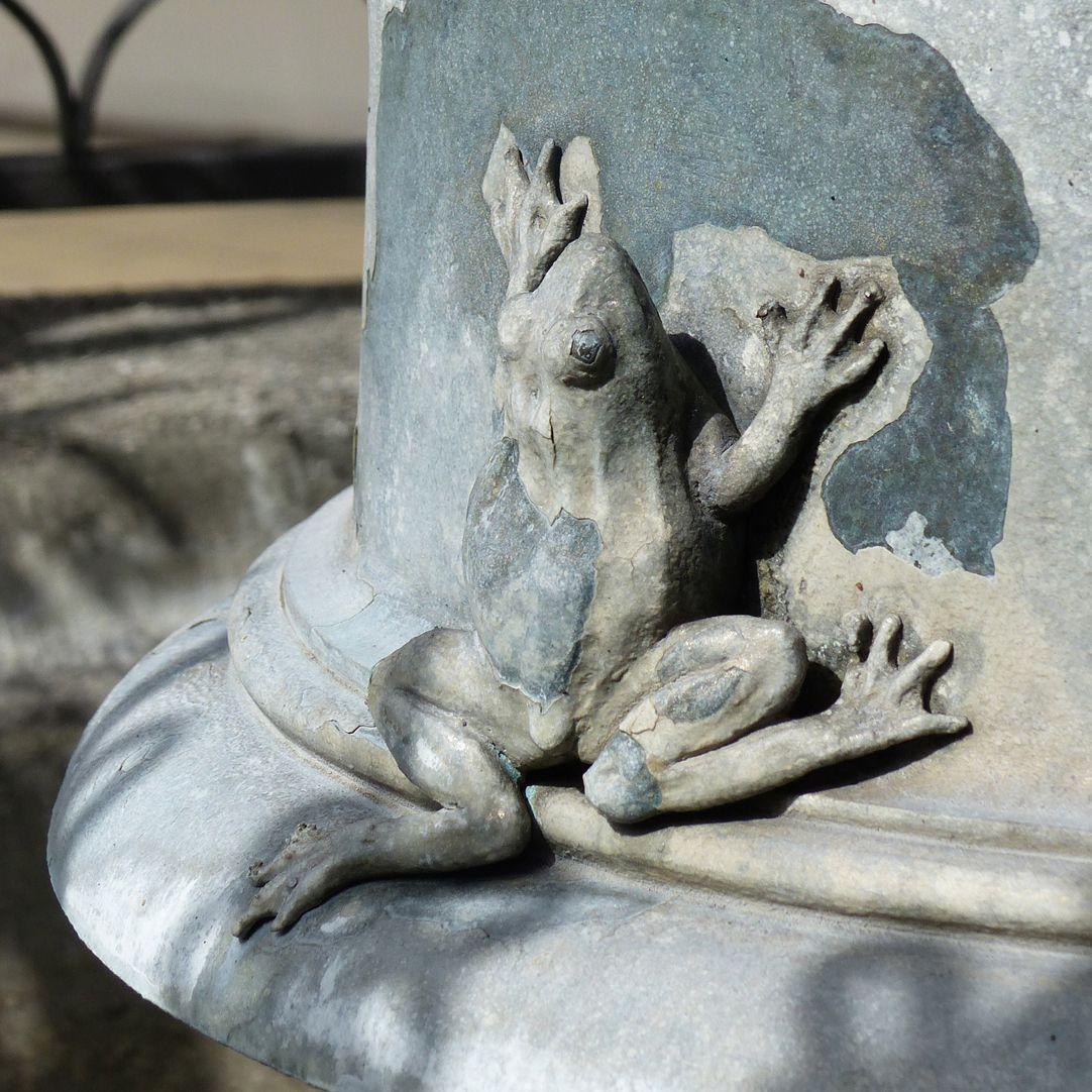 Geiersbrünnlein Schalenpfeiler, Frosch