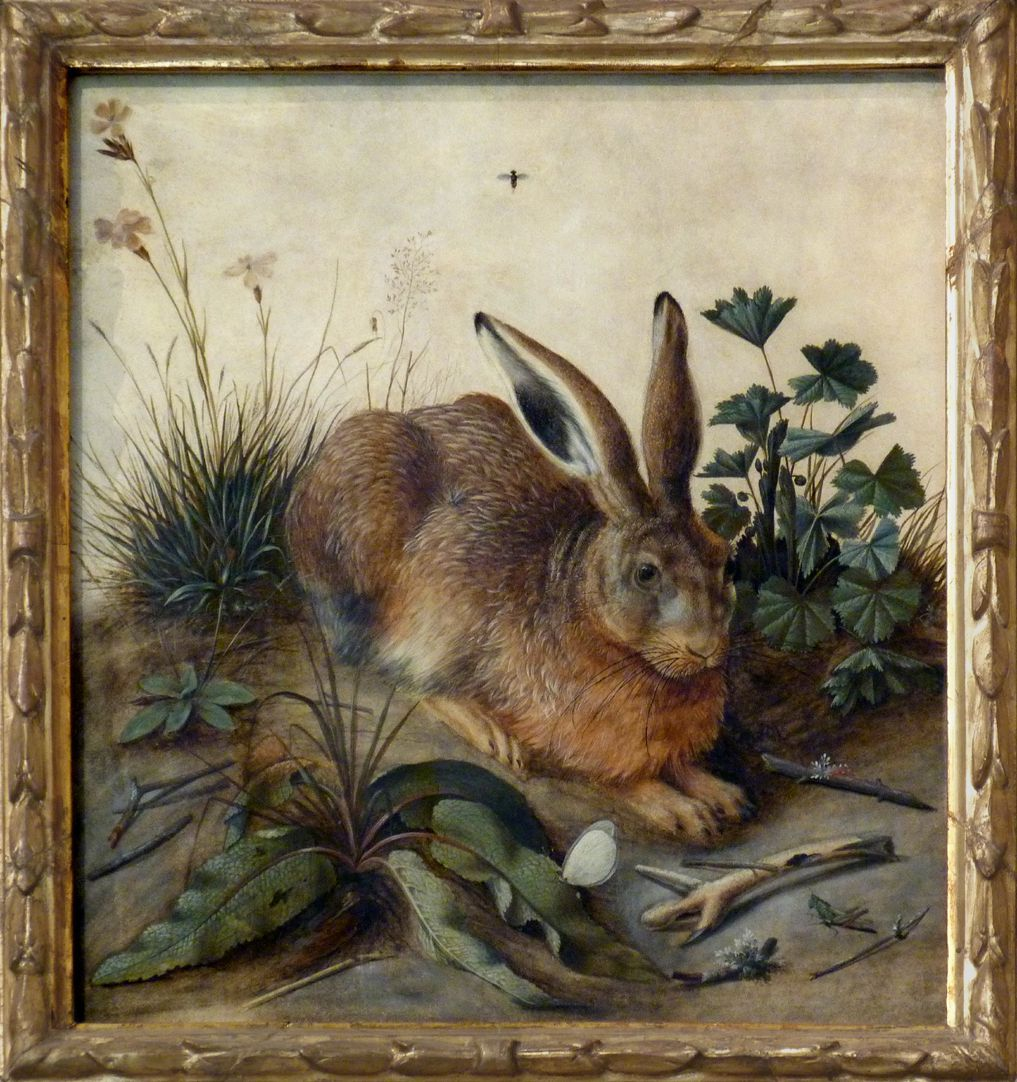 Der Hase (Rom) Gesamtansicht