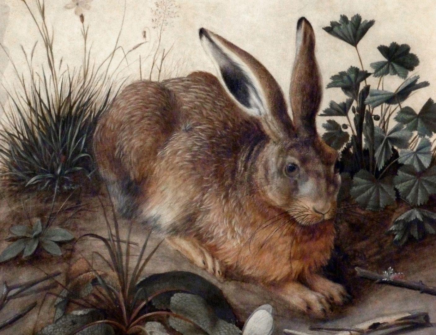 Der Hase (Rom) mittleres Bildfeld