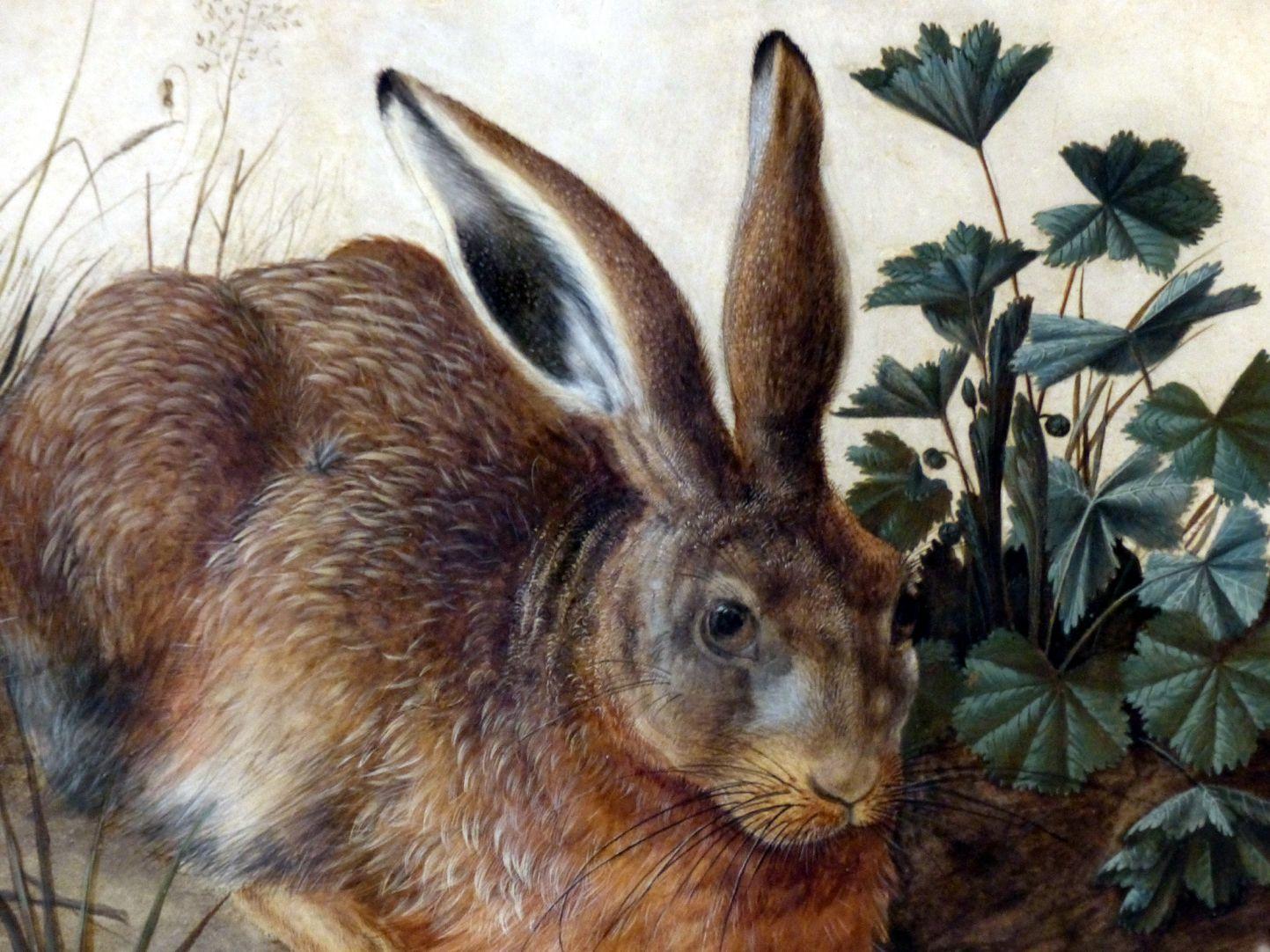 Der Hase (Rom) Detail