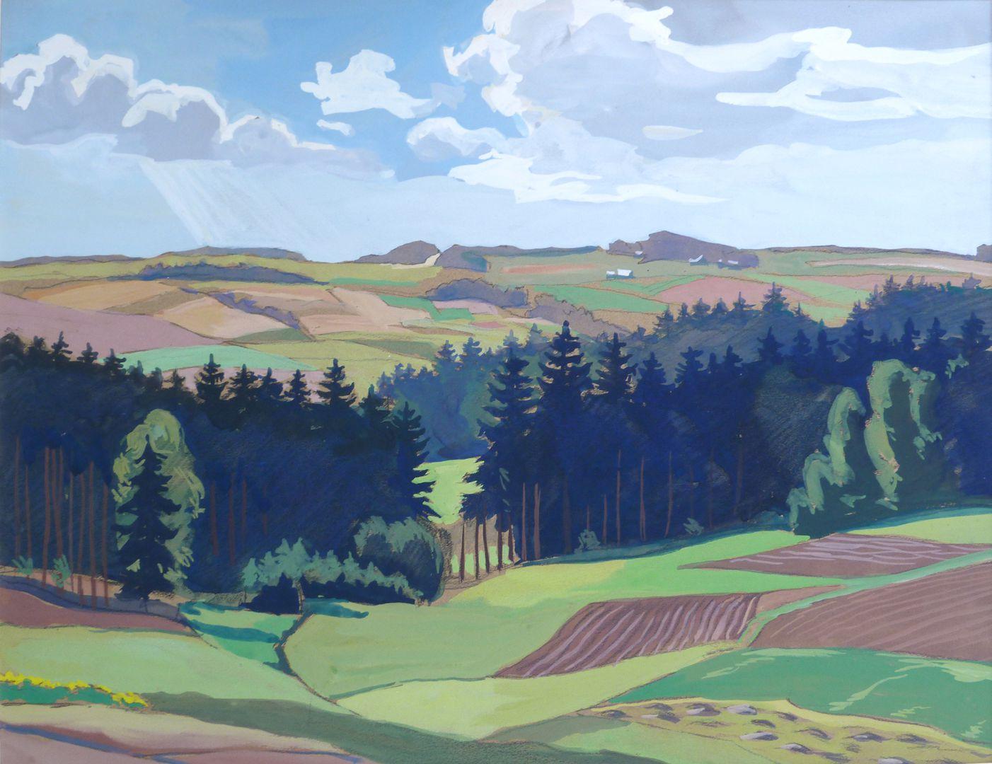Landschaft bei Reichenbach im Vogtland