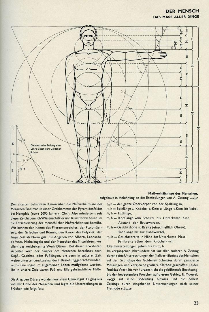 DER MENSCH / DAS MASS ALLER DINGE Bauentwurfslehre, Seite 23: DER MENSCH / DAS MASS ALLER DINGE