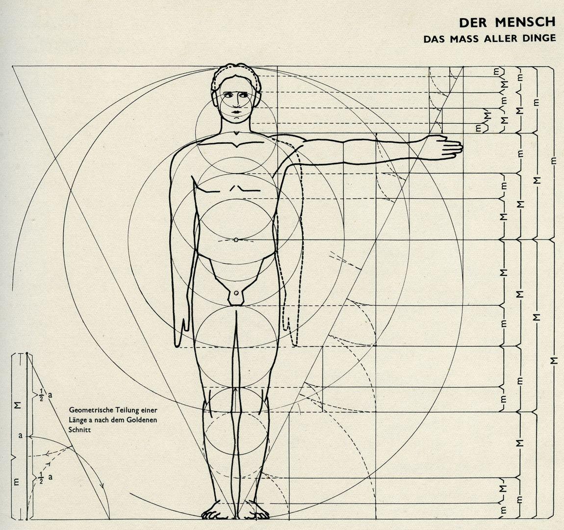 DER MENSCH / DAS MASS ALLER DINGE Bauentwurfslehre, Seite 23, oben: DER MENSCH / DAS MASS ALLER DINGE