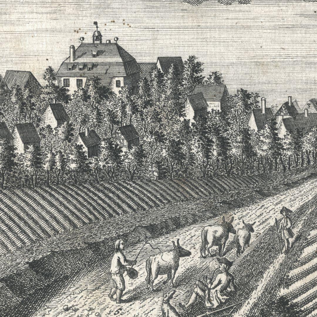 Das Hochadeliche Wurster=Creutzbergische Ritter Guth Rauschenberg Bildausschnitt mit Schloss und Siedlung