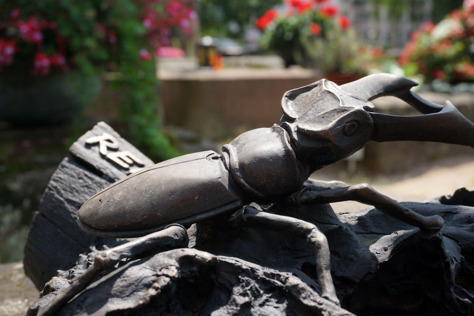 Rochusfriedhof Grabstätte 209 Modernes Epitaph / REICHL / Hirschkäfer auf einem Stück einer Eichenbaumwurzel, Detail