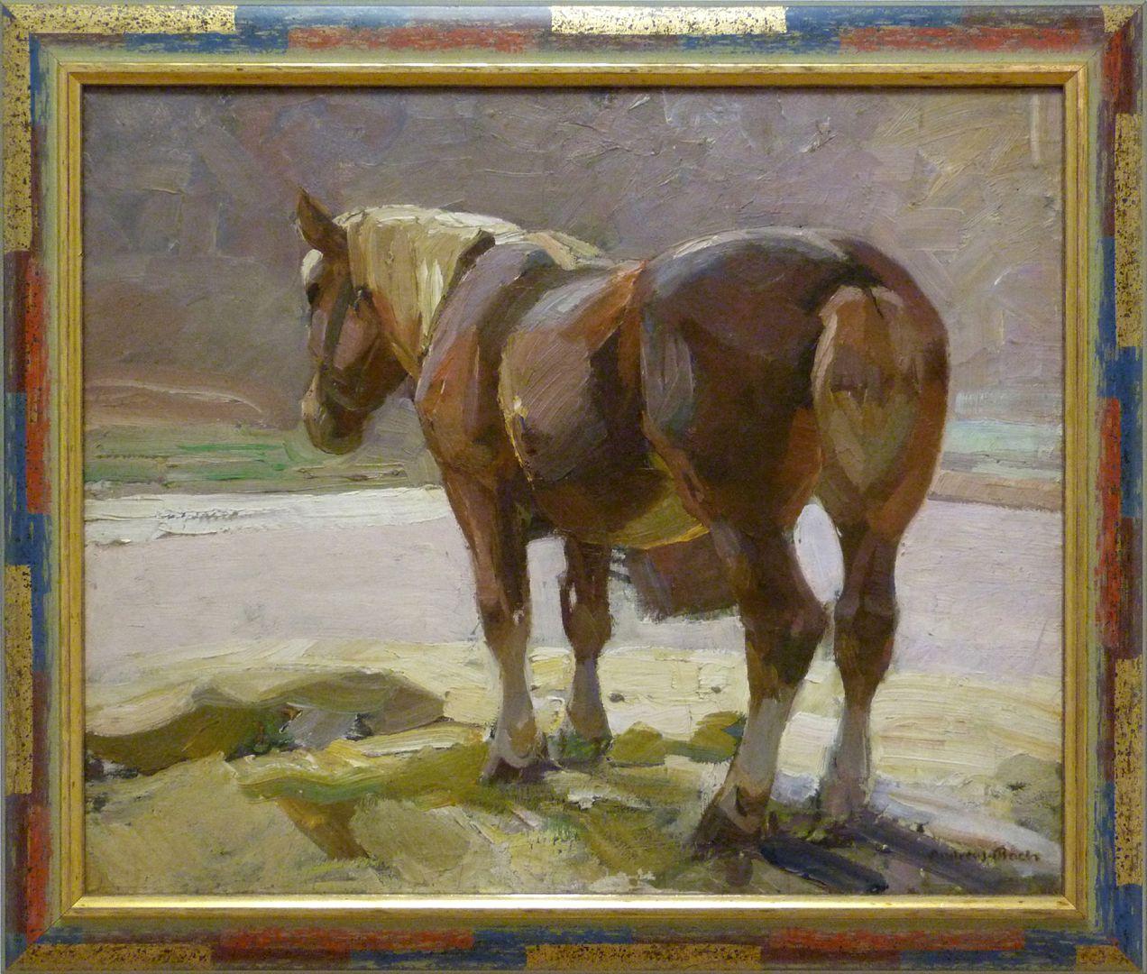 Ruhendes Pferd