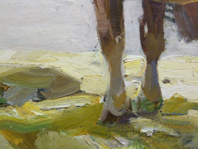 Ruhendes Pferd Detailansicht der Vorderbeine