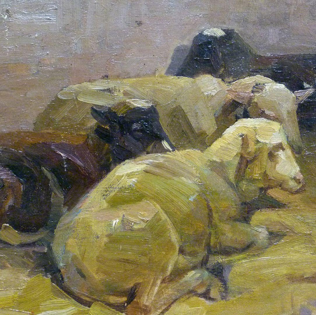 Schafe mittleres Bildfeld