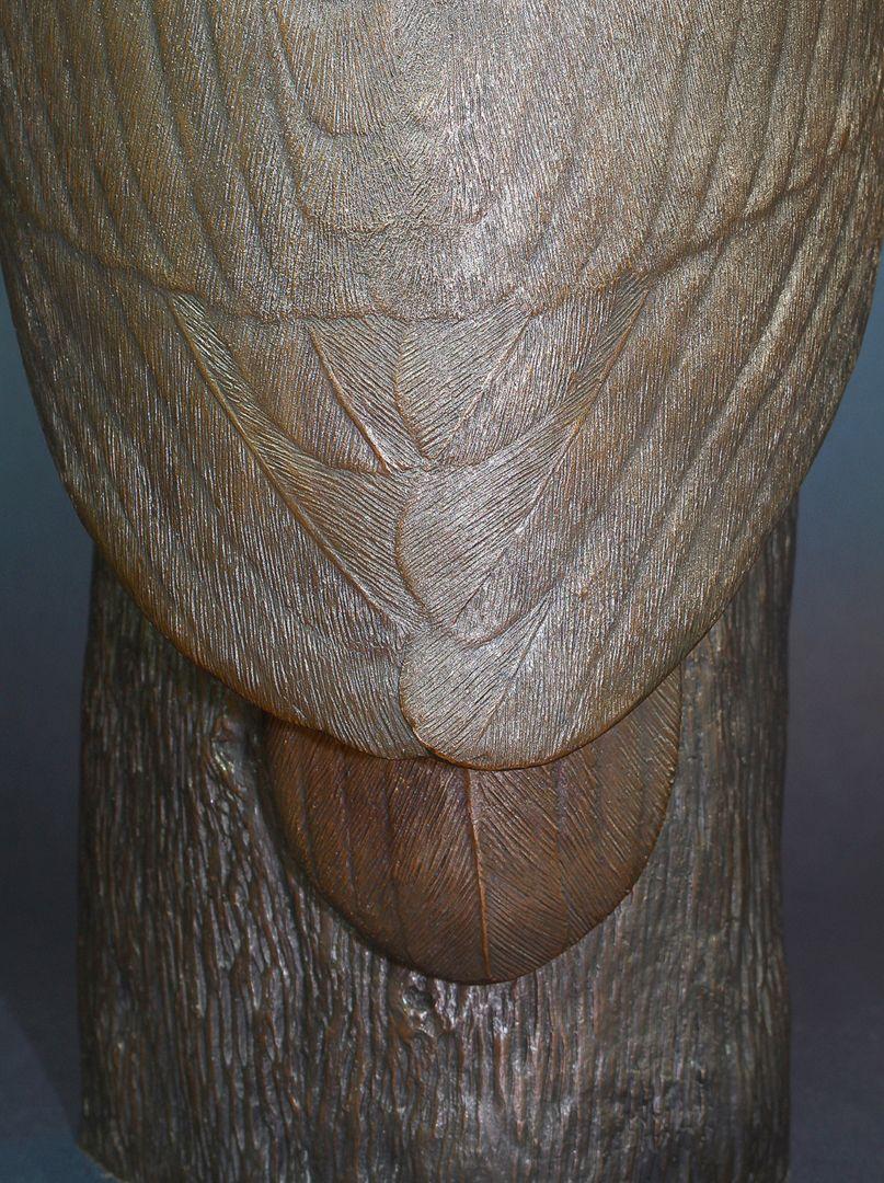 Waldkauz hintere Ansicht mit Flügelfedern, Schwanzfeder und Baumstamm