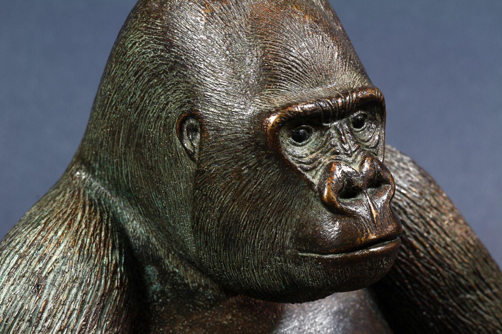Westlicher Flachlandgorilla Kopf, Schrägansicht